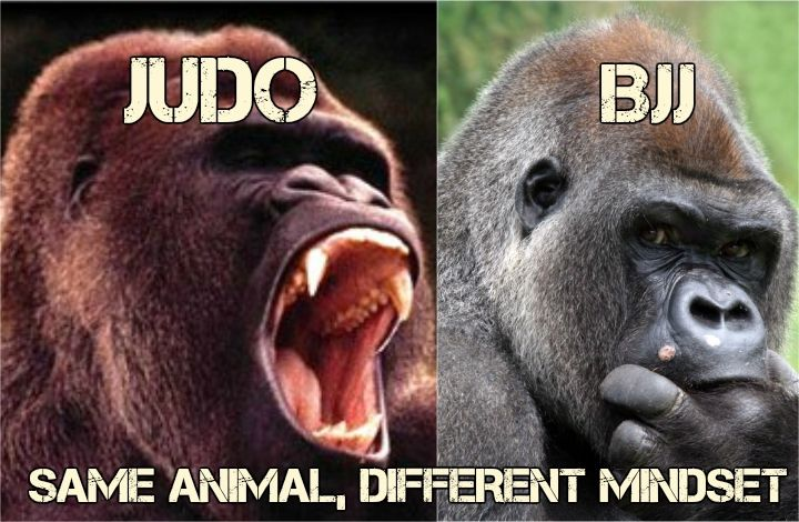 judo vs jiu jitsu meme